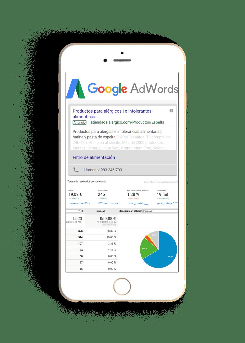 Gestion de google adwords Valladolid
